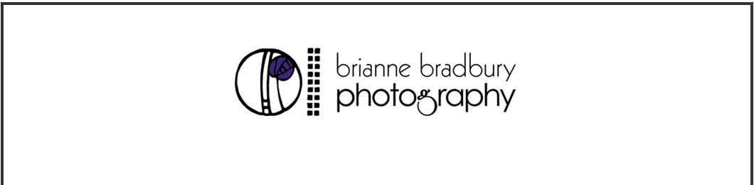 briannebradburyphotography.com logo
